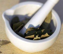 Полезные и лечебные свойства лаврового листа