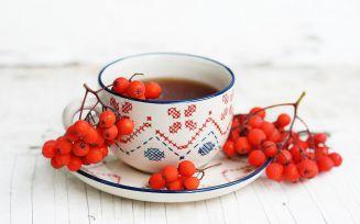 Народные рецепты из рябины красной