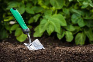 как уменьшить кислотность почвы