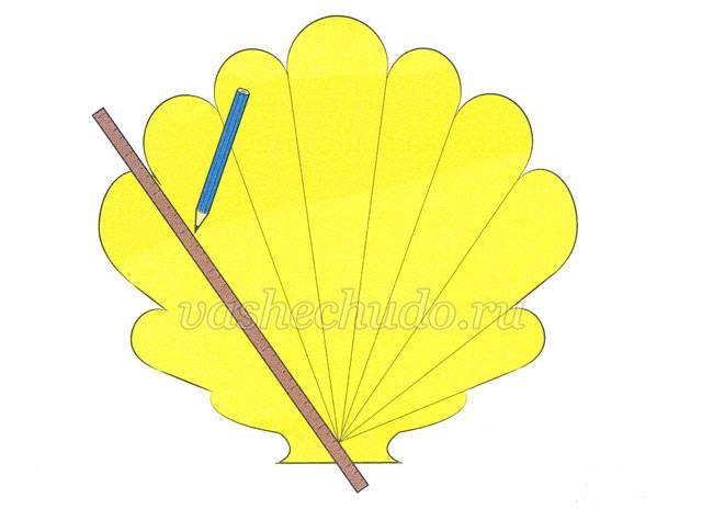 картинка для детей ракушка