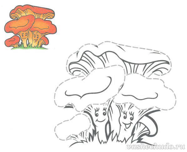 Раскраска для детей. Грибы лисички